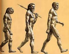 Progression of man